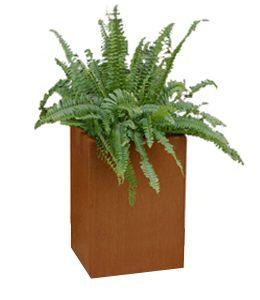 A + Concepts Cortenstaal Plantenbak 30x30xH60