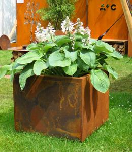 Standaard plantenbakken