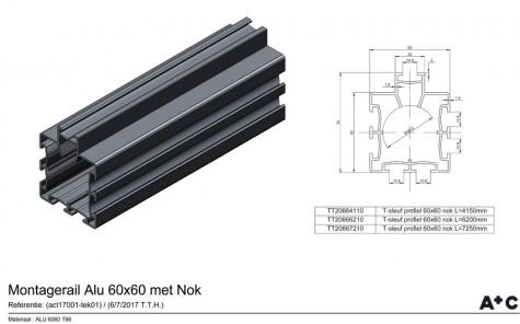 TT Extrusie profiel 60x60